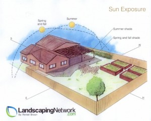 landscaping-network_3282