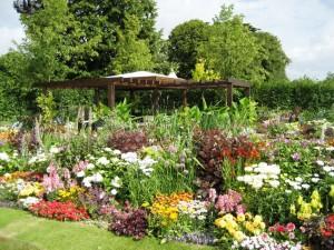 gardening-ideas2