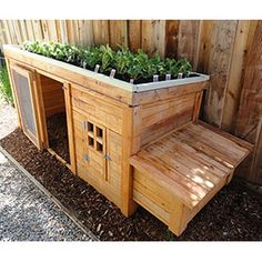 gardening-in-small-spaces_03