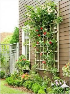 gardening-in-small-spaces_05